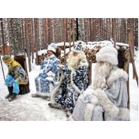 К Деду Морозу за сказками