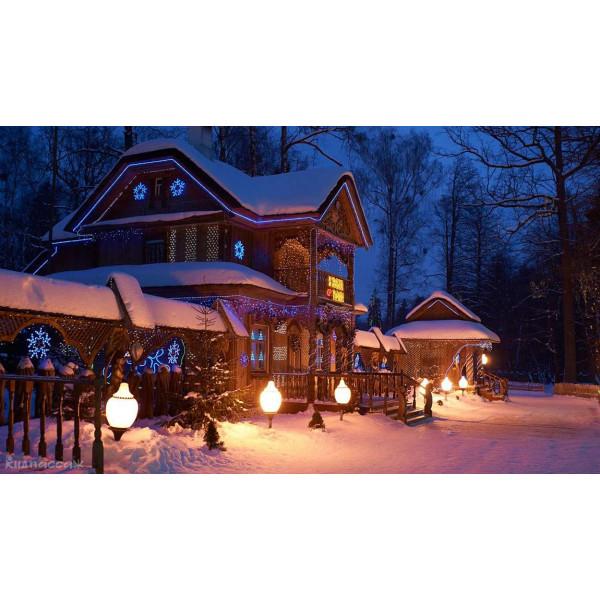 К Белорусскому Деду Морозу в Беловежскую Пущу